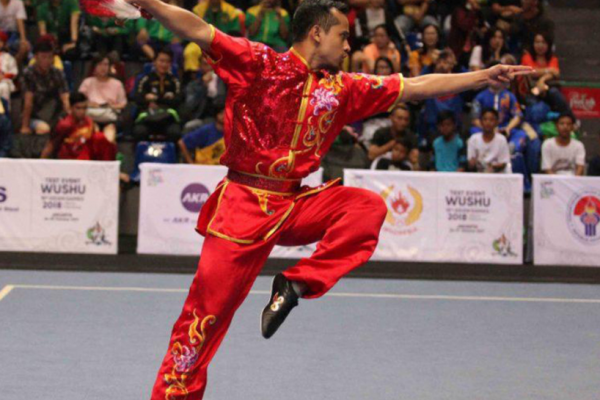 What is wushu ? It is a Chinese martial art